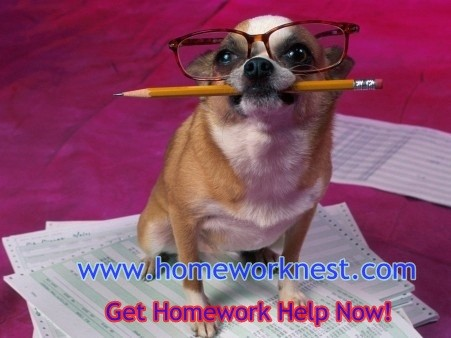 Get Online Homework Help from the best Homework Market Tutors at https://homeworknest.com/