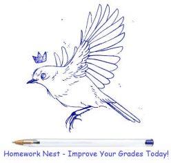 Homework Nest