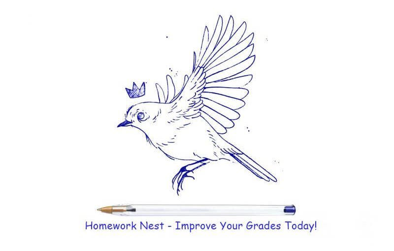 Homework Nest - Ace My Homework